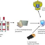 Схема-ЕГАИС-Розница_закупка